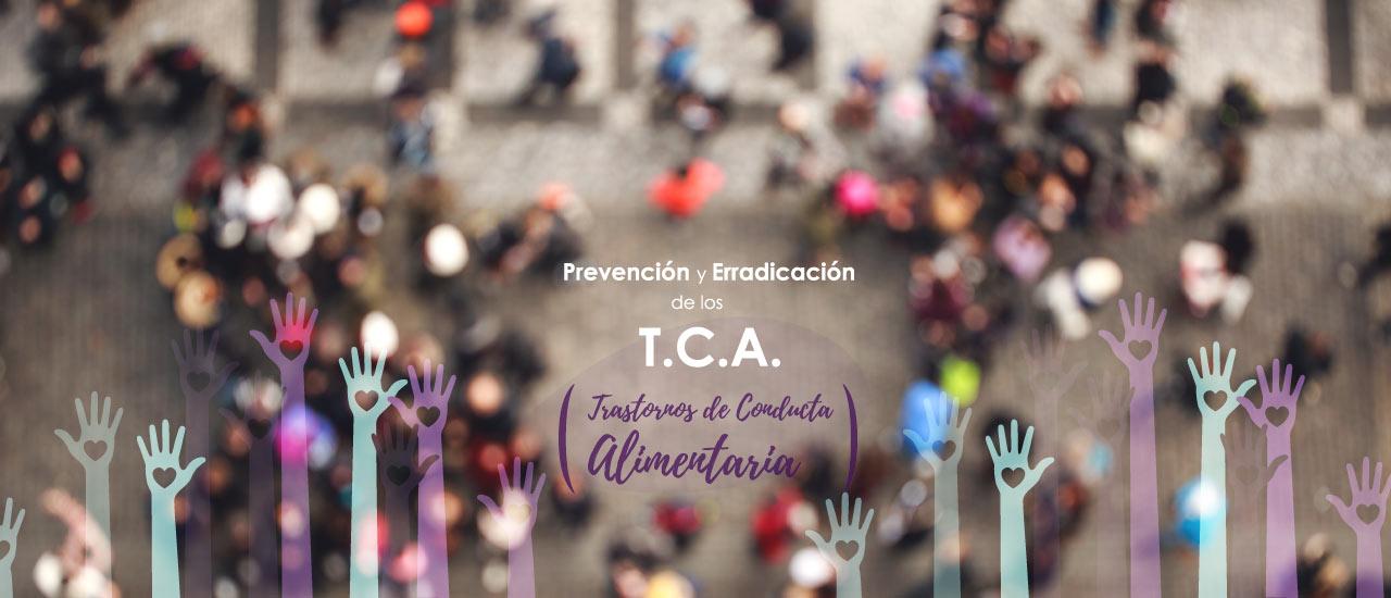 Fundación APE – Prevención y erradicación de los TCA